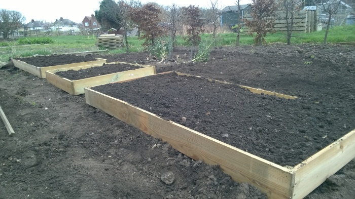 Raised bed construction for Amanda March 2017
