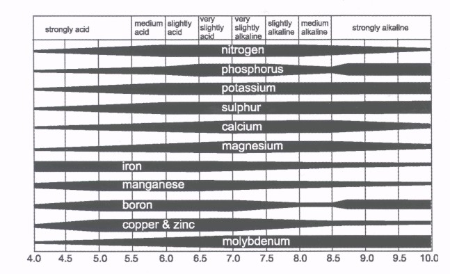 Effect of soil pH on nutrient availability