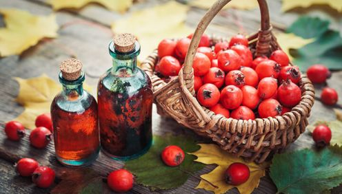 Hawthorn berries & tinctures