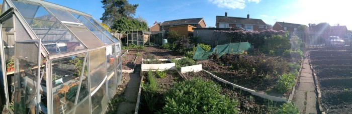 Our no dig allotment [Spring panorama][April 2017]