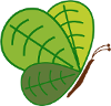 Wildlife & Eco Gardens - Butterfly logo