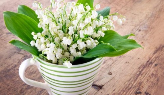 "Decorative jug of ""muguet"""