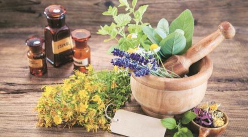 Herbal medicine ingredients and tools