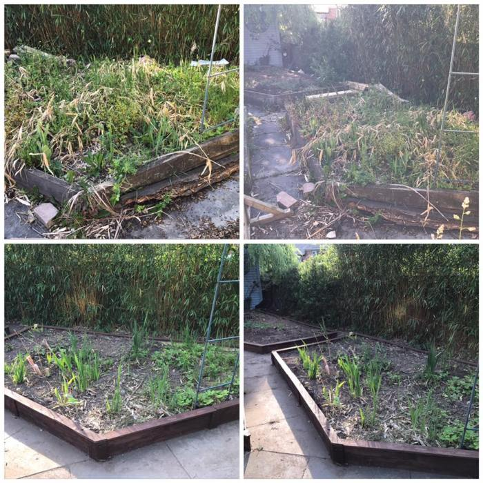 Raised beds for Sarah Feirn (before and after)
